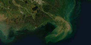 Mississippi River Delta, Louisiana, US (UTM/WGS84)